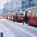 image winter-jpg